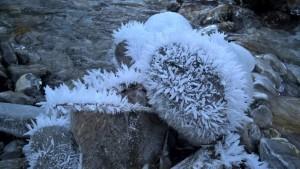 Die Luftfeuchtigkeit am Lech als Ursache für große Raureif - Kristalle.