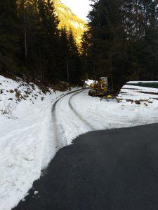 Einstieg Schröfle Forstweg Baichlsteinrunde.