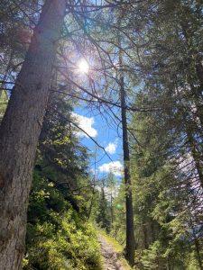 Wanderlust im sanften Tourismusgebiet Lechtal.
