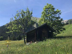 Schöne Sommertage in der Natur des Lechtales.