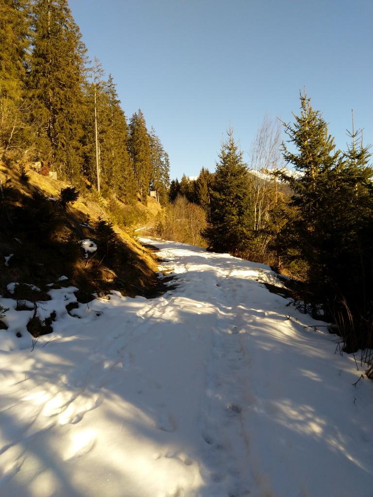 Winterwanderweg Höhenweg Baichlstein Vorderhornbach-Stanzach.