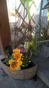 Frühjahreserwachen im Lechtal Deko-Ostern Dorfstube