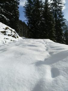 Verschneite Spuren im Schnee.