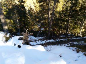 Serpentienabstieg zur Talquerung Baichlsteinrunde