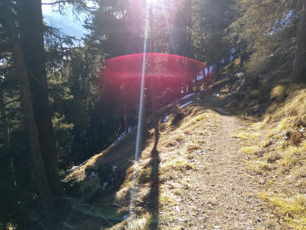 sonniges Wanderrunde Baichlstein Waldserpentinen