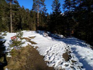 Einstieg Waldweg Höhenweg Baichlstein.