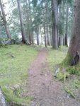 Vitalweg Holzgau Waldspa-Dorfstube