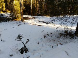 Schlängelnder Bach im Winter.
