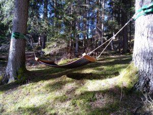 Ruhematte im Wald-Spa in Holzgau