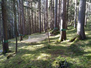 Netz zur Geschicklichkeit und Entspannung im Wald.