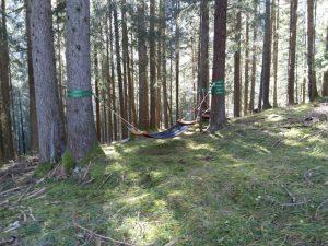 Chillout Zone Waldinspiration Vitalweg Holzgau.