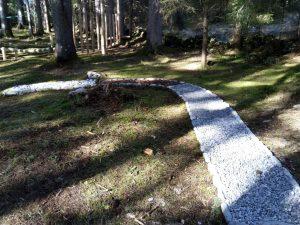 Barfußweg Wald-Spa in Holzgau im Lechtal.