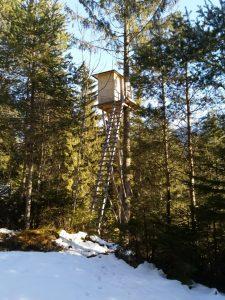 Hochstand Wildschau Vorderhornbach Baichlsteinrunde