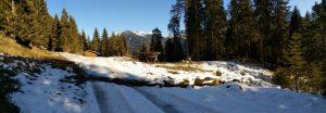 Wildfütterung Baichlsteinrunde Vorderhornbach.