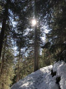 Winterwanderfotomotiv Dorfstube Holzgau.