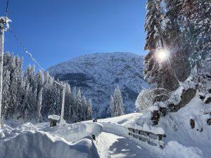 Winterwandern mit den Schneeschuhen.
