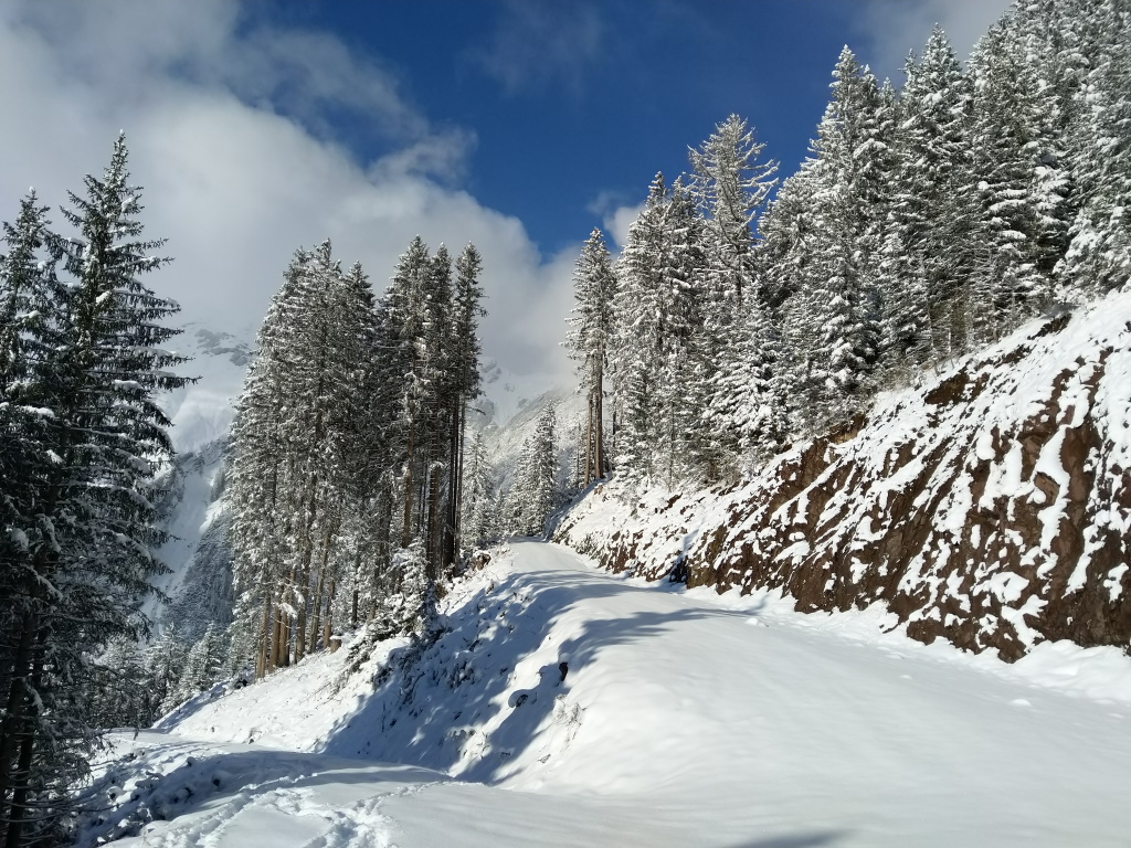 Winterwandern mit Schneeschuhen ab der Dorfstube.