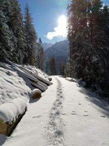 Schneeschuhwandern mit der Dorfstube Holzgau.