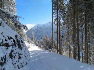 Winterwandern im Lechtal.