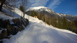 Winterwandern in Holzgau.