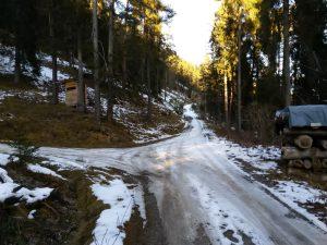 Weggabelung Forstweg Stanzach Baichlstein