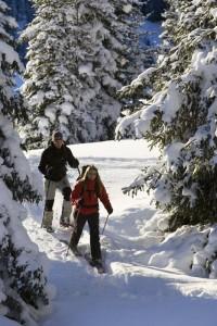 Schneeschuhwandern in Holzgau.