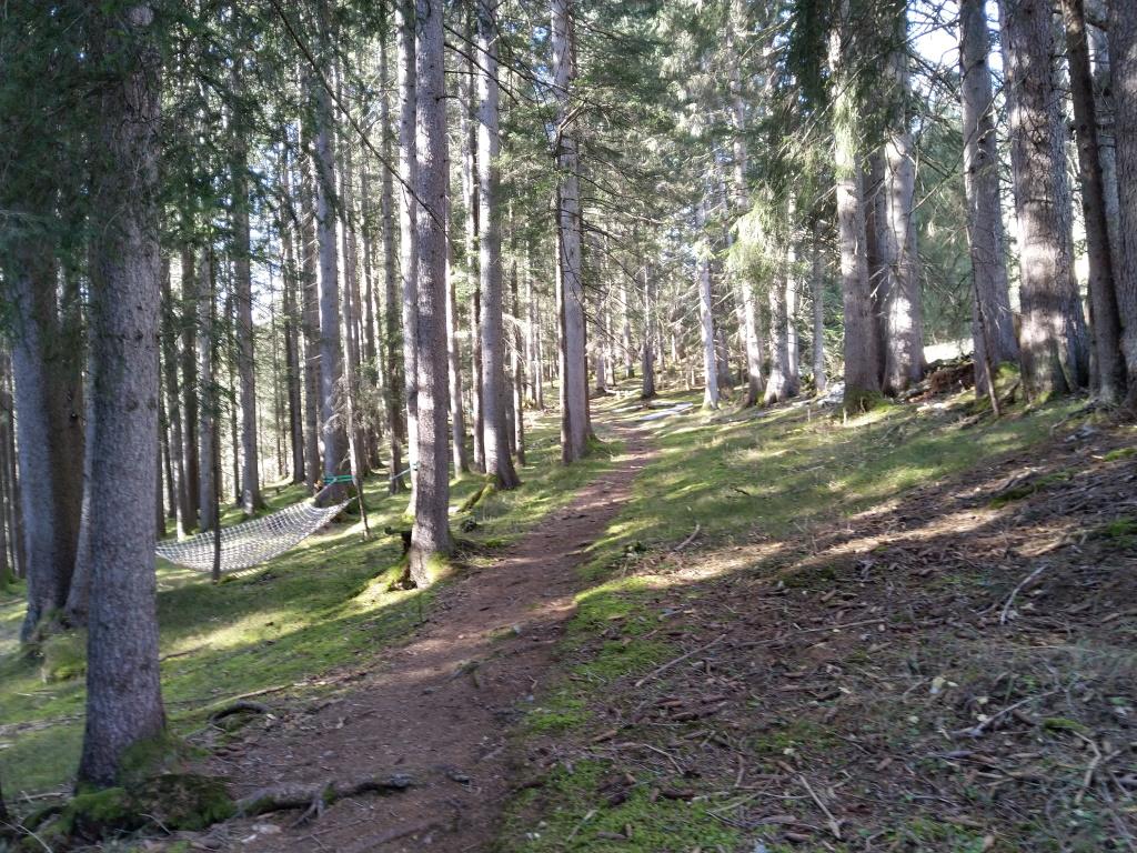 Wald-Spa bereich am Vitalweg in Holzgau.