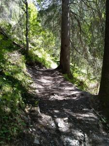 Wanderweg Mühlwaldweg Holzgau